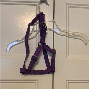 Pink and purple Petco dog harness